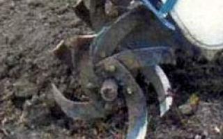 Истощение и заражение почвы