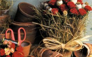 Горшок с розами в сельском стиле