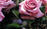 Розы и плоды в корзинке