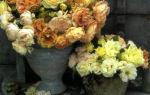 Композиция из старинных садовых роз