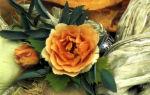 Старомодное украшение на корсаж из садовых роз