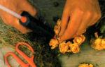 Подсвечник с ароматом роз